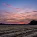 Sunset on Polesie