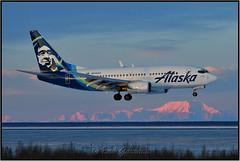 N614AS Alaska Airlines (Bob Garrard) Tags: n614as alaska airlines boeing 737700 737 mirage anc panc