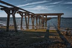 old pier in Nieby I, Schleswig-Holstein (CPbild) Tags: d750 ostsee nieby altelandungsbrücke nature balticsea nikon radtour outdoor ostseeradweg cpbild natur sigmaart35mm14