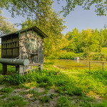 Fishing huts at the Schwechat-River thumbnail