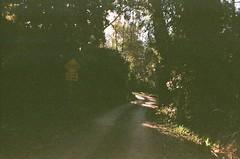 Toorak Road (Matthew Paul Argall) Tags: vilia belomo fujifilm fujicolor100 100speedfilm 100isofilm 35mmfilm road street toorakroad mountdandenong cn135