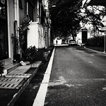 Lonely Walk thumbnail