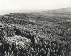 1973. Douglas-fir tussock moth defoliation. (USDA Forest Service) Tags: usda usfs forestservice foresthealthprotection stateandprivateforestry region6 r6 douglasfirtussockmoth divisionoftimbermanagement insectanddiseasecontrol 1973 defoliation aerialphoto aerialdetectionsurvey insect forestinsect forestentomology outbreak aerialphotography oblique tree mortality defoliator