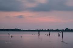 Rise and Shine (jacysf) Tags: pasirrisbeach sunrise throughherlens waterscape water beach poles stilts panorama pinksunrise