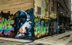 Graffiti Alley - May 31, 2018 (Katherine Ridgley) Tags: toronto alley graffiti graffitialley graffitiartist art artist gallery downtown city urban streetphotography streetart street streetartist lane rushlane tag tagging tagged paint spraypaint building wall