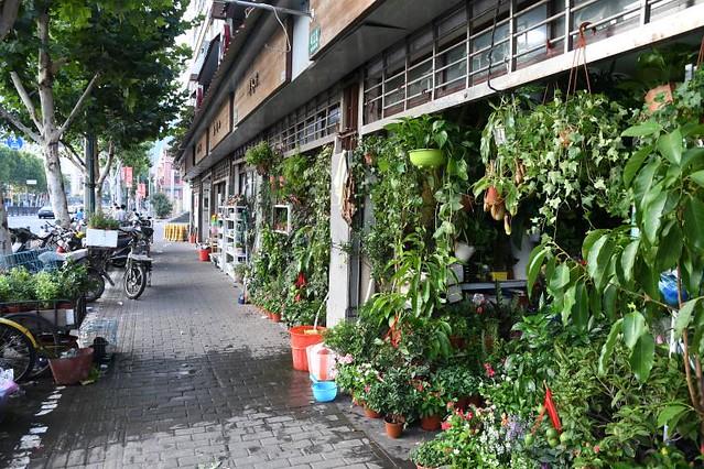 上海下町半日めぐり(アジアの街歩きのオプショナルツアー)