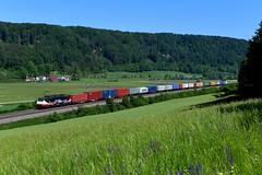 """MRCE / LTE 189 212 """"LINKED BY RAIL"""" Breitenfurt (0287n) (christophschneider1) Tags: kbs990 breitenfurt altmühltal oberbayern mrce dispolok lte es64f4 es64f4212 189 189212 werbelok linkedbyrail rotterdamposenshuttle rotterdampoznanshuttle locmore werbung ltenetherlands container containerzug ganzzug d850"""