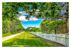 Along the Rail Trail (Timothy Valentine) Tags: plymouth massachusetts unitedstates us fence friday large 0618 2018