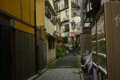 DSC_0015 (sxcxxhx) Tags: japan osaka kyoto hydrangea flower trip voyage 日本 大阪 京都 旅行