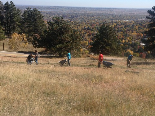 Photo - Eagle Scouts Trail Project