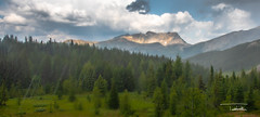 Sunrise Peak (trkosha) Tags: canada rockies mountains storm clouds hail rain healy pass hiking trail summit trees green skies