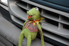 Hobo Kermit The Frog (Joey 23) Tags: kermit frog stuffed toy plush hobo grill strapped van rough brooklyn nyc