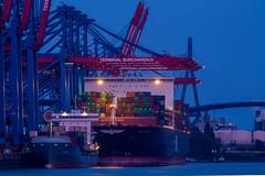 size comparison (Fotos aus OWL) Tags: hamburg hafen terminal container containerterminal waltershof burchardkai ship schiffe