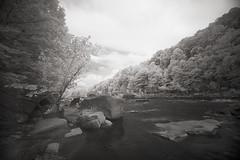 Cheat River Canyon (DRCPhoto) Tags: irconverteddslr digitalinfrared canon5d sigma1224mmdghsm cheatriver westvirginia