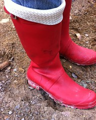 Red wellies (Lisban2009) Tags: wellies rubberboots hunters gummistiefel turneddownwellies foldedwellies red