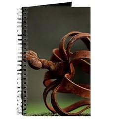 head_ornament_journal (Fine Arts Designer) Tags: notebook notebooks writing write stationaery paper spiral