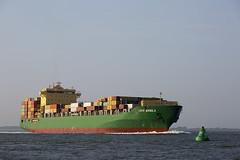 CAPE MANILA (angelo vlassenrood) Tags: ship vessel nederland netherlands photo shoot shot photoshot picture westerschelde boot schip canon angelo walsoorden cargo container capemanila