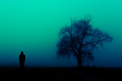 Boss Battle (iratebadger) Tags: nikon nikond7100 d7100 dark silhouette shadows person blue tree eastridings england hood hooded atmospheric iratebadger black figure