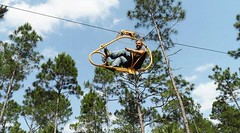 With a #bicycle through the Treetops #ecoflyer #treetop http://bit.ly/2lpqgFb (Skywalker Adventure Builders) Tags: high ropes course zipline zipwire construction design klimpark klimbos hochseilgarten waldseilpark skywalker