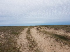 Day 6 - East Point National Wildlife Area (Bobcatnorth) Tags: lesilesdelamadeleine magdalenislands quebec canada summer 2018 cycling velo bicycle bicycling cycletouring bicycletouring touring tourdevelo gulfofstlawrence