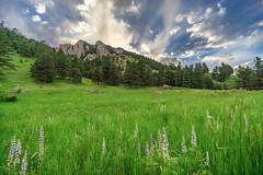 FlatIronsSpring (Jesse.Vance) Tags: boulder colorado rockymountains rockies eldorado clouds landscape spring flowers meadow