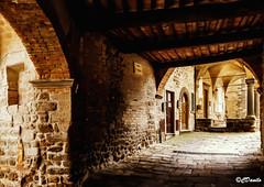 Sotto i portici - Under the arcades (danilocolombo69) Tags: archittetura borgo archi portici montecatinivaldicecina borghiitaliani colonne danilocolombo danilocolombo69 nikonclubit