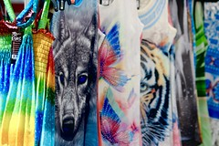 Wolf in chic clothing (stephencharlesjames) Tags: casual clothing tshirt rack wolf addison county vermont fair