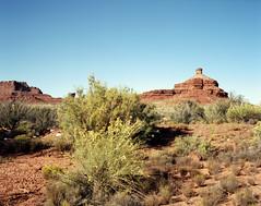 Riding Through The Old West (Scott Holcomb) Tags: valleyofthegods bearsearsnationalmonumentpretrump utah asahipentax6x7 supermulticoatedtakumar6x714575lens zenzabronica82mml1afilter kodakektar100film 120film mediumformat 6x7 epsonperfectionv600 photoshopdigitalization