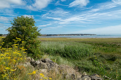 Pegwell Bay Country Park 1642 (Kent Country Parks) Tags: summer autumn spring pegwellbay country countryside kentcountryparks kent