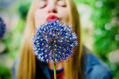 Woman blowing flower (albertoandaloro) Tags: flower girl summer beautiful woman portrait blowing nature young happy hand people female dandelion face green spring wind fun beauty adult wish blow lips outdoor holding plant person allergy freedom cute background happiness joy model white one lifestyle hair sun caucasian park attractive outdoors fly sky teen field closeup blue natural seed grass garden meadow youth teenager sunny teenage gift dreaming yellow dreams environment concept colors