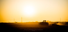 Early Bird (Rich Lonardo Photo) Tags: brentwood california farmer farming corn sunrise tractor agriculture magazine cali
