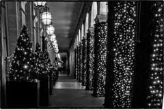 Ghosts of Christmas past (aumbody images) Tags: paris 75001 france night christmas bw aumbody images 80d tamron2875mm blackandwhite christmaslights christmastree longexposure