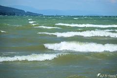 Jour de bise sur le Lac 3 (Jean-Daniel David) Tags: lac lacdeneuchâtel eau vague bise écume ciel paysage nature bleu blanc vert horizon vent yverdonlesbains suisse suisseromande vaud