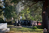 Crescendo (R Class Productions) Tags: steam train puffing billy railway forest trees locomotive heritage vintage na class baldwin 262 tank engine