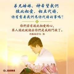 圣经金句-神希望我们彼此相爱 (追逐晨星) Tags: 圣经金句 祷告 约翰福音 彼此相爱 金句图片 金句卡片