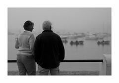 """Le Soir... Quand Le Fog..."" (The Blue Water Lily's Company) Tags: fdrouet nb bw monochrome monochrom couple fog myst brume brouillard bretagne brittany breton soir nikon d90 evening"