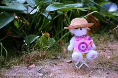 HTBT || LOLLY WANTED TO TAKE PICTURES OF ME  || LOLLY HEEFT EEN NIEUWE CAMERA (Anne-Miek Bibbe) Tags: lolly bear beer beertje toycamera speelgoedcameraatje happyteddybeartuesday speelgoed toy spielzeug giocattoli juguetes bringuedos jouets teddybear teddybeer speelgoedbeer nounours canoneos700d canoneosrebelt5idslr annemiekbibbe bibbe nederland 2018