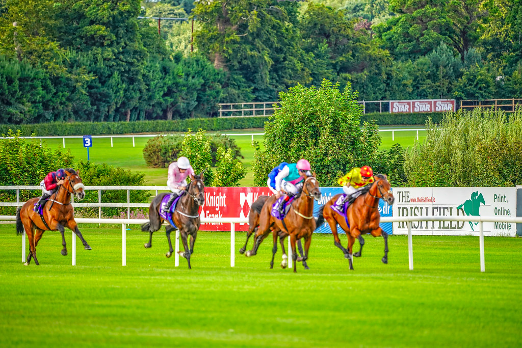 SONY KINDLY INVITED ME TO A DAY AT THE RACES [I USED A SONY FE100-400mm LENS]-142871