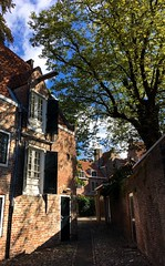 Kuiperspoort (Wouter de Bruijn) Tags: kuiperspoort middelburg zeeland walcheren nederland netherlands holland dutch architecture urban sunlight sun shadow path tree iphone iphonese