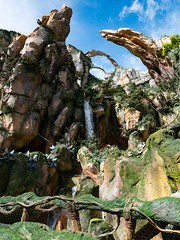 1608 Disney's Animal Kingdom16 (nooccar) Tags: 1806 animalkingdom devonadams devoncadams devonchristopheradams disney disneyworld disneysanimalkingdom june june2018 devoncadamscom devoncadamsgmailcom