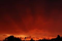 Sunset 8 1 18 #13 (Az Skies Photography) Tags: sun set sunset dusk twilight nightfall sky skyline skyscape rio rico arizona az riorico rioricoaz arizonasky arizonaskyline arizonaskyscape arizonasunset cloud clouds red orange yellow gold golden salmon black canon eos 80d canoneos80d eos80d canon80d 2018 august 1 august12018 8118 812018