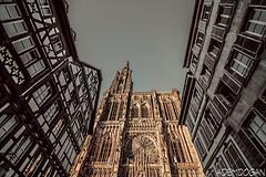 STRAßBURG (01dgn) Tags: strazburg strasburg strasbourg streetphotography cathedral strassburgermünster cathédralenotredamedestrasbourg france frankreich fransa travel