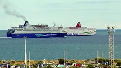 18 08 10 Oscar Wilde and Stena Europe Rosslare (2) (pghcork) Tags: irishferries stenaline oscarwilde stenaeurope rosslare ireland ships shipping ferry ferries carferry