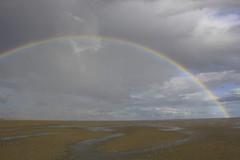 _MG_7173 (tombild) Tags: nordsee2018 segeln tomsblognordsee2018 spiekeroog regenbogen