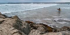 Blurry surfer (matthew:D) Tags: horizon blur sand landscape water person walking wetsuit evening rocks califronia blue surfboard seaweed surf motion surfer wave kelp green beach color sandiego saltwater