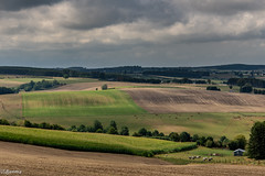 13082018-DSC_0004 (vidjanma) Tags: paysage campagne vallons ardenne couleurs