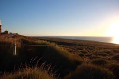 The sun is going back to the Indian Ocean (Paul Threlfall) Tags: indianocean vlaminghhead lighthouse grasses sunset sun wa westernaustralia northwestcape