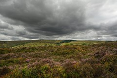 HoldingOff (Tony Tooth) Tags: nikon d7100 sigma 1750mm moors moorland heath heather cloud stormy staffordshiremoorlands staffs staffordshire newtown