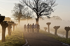 Out of the Fog (Johan Konz) Tags: rural road cyclist people tree pollardwillow fog mist outdoor landscape purmerland waterland netherlands nikon d7500 grass sky
