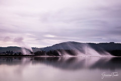 SOFT STEAM (Cor Lems) Tags: point landscape newzealand water sunrise lakerotorua sulphur landscapes geothermal lake rotorua